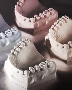 Dentist Product Categories Dental Studies Institute